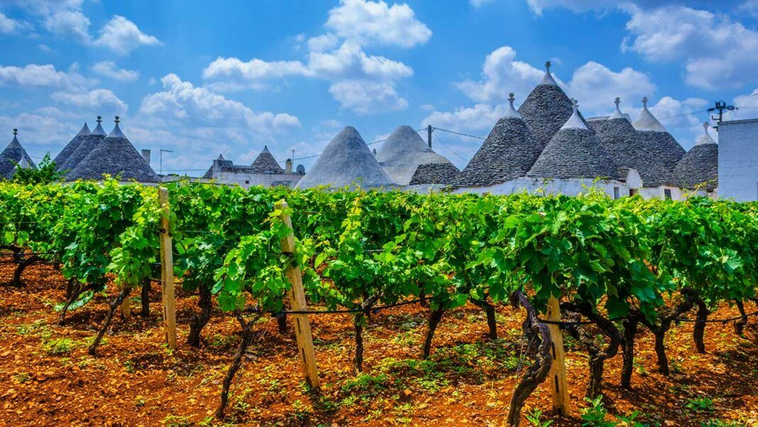 Vineyards amidst trulli in Apulia (c) trabantos/Shutterstock.com